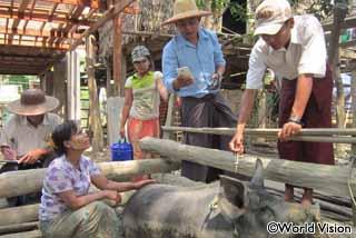 家畜の健康管理と予防接種