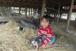 子豚繁殖グループによりローンの負担が軽減