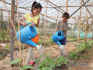 毎日畑で水やりを手伝っているラムトンちゃん(左)