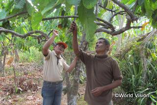 【トウナ地域】「カカオ栽培の研修に参加し、学んだことを実践しています。また、ほかの村の農家にも学んだことを伝えています。」 ムッターさん(カカオ農家)