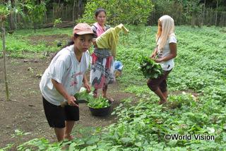 【トウナ地域】「有機野菜栽培の実演指導に参加してから、野菜栽培で収入が増えました。野菜を売って収入が得られるようになり、得たお金は貯蓄しています。」 マピアさん(地域の母親)