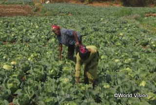 【トヨタ地域】「農業研修を受け、より良い栽培技術を学びました。今では家族の必要を満たすのに十分な量の作物を収穫することができます。」 マリーさん(女性の委員会のメンバー)
