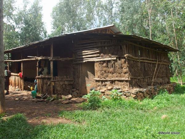 支援地域にある一般的な家