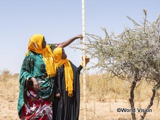 ワールド・ビジョンの活動では、コミュニティの力を強化するため、子どもたちの参画も重要視しています(写真:ソマリア)