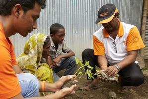 パパイヤの苗木を植えるWVスタッフ