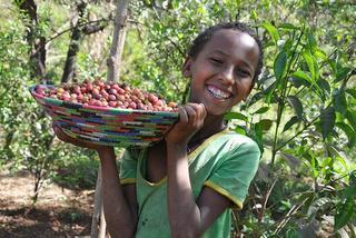 収穫したコーヒー豆を嬉しそうに見せるデュカリの娘