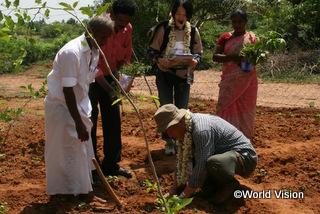 ナスやトマトの苗を小学校の菜園に植えました