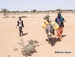 慢性的な干ばつにより水や食糧の不足が深刻化しています