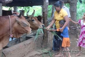 畜産を始めた家庭